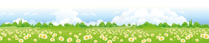 Grünes Feld mit Blumen lizenzfreies stockfoto