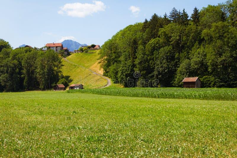 Grünes Feld nahe bei Schokoladengewebe Nestle switzerland stockfotos