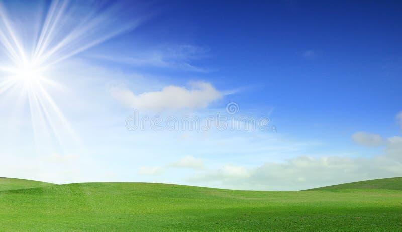 Grünes Feld und Himmel lizenzfreie stockfotos