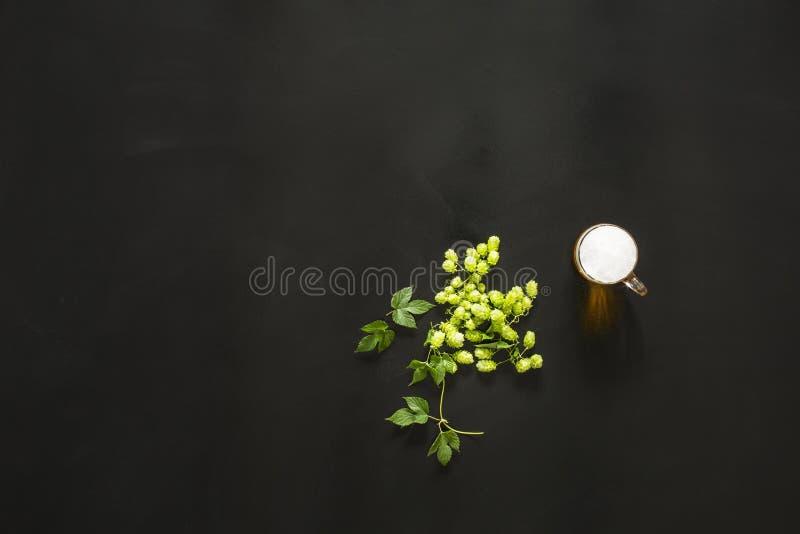 Grünes frisches Hopfen auf dem schwarzen Hintergrund lizenzfreie stockfotos