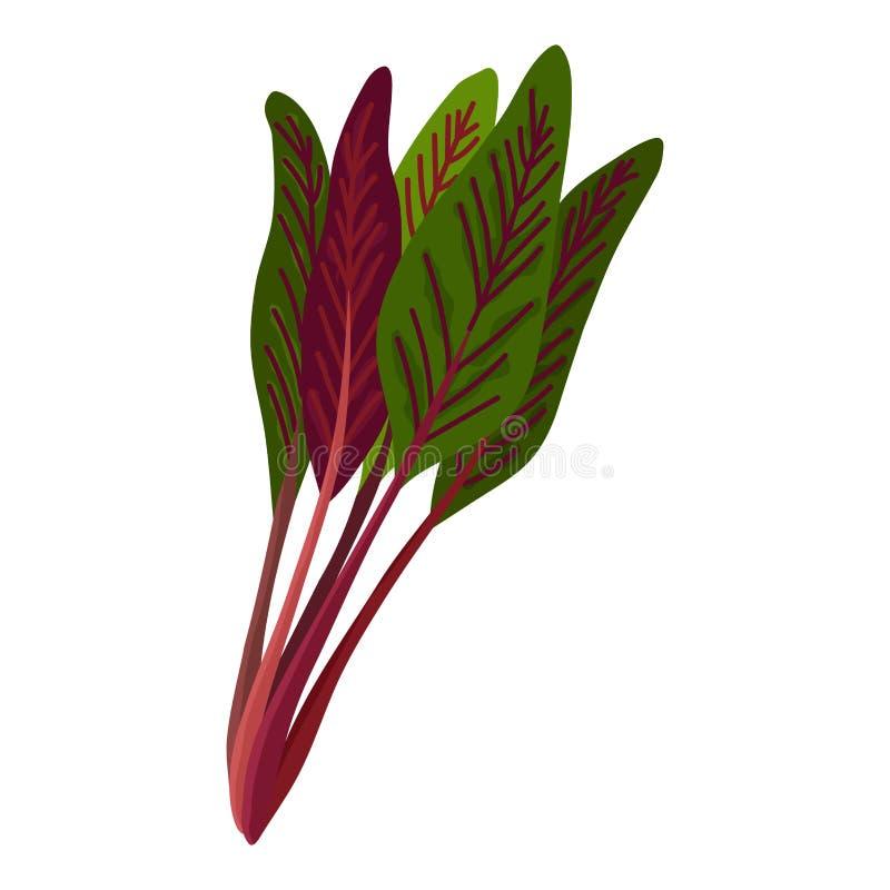 Grünes frisches Salatgemüse und Kraut, organische vegetarische Nahrung, Vektorillustration lokalisiert auf weißem Hintergrund vektor abbildung