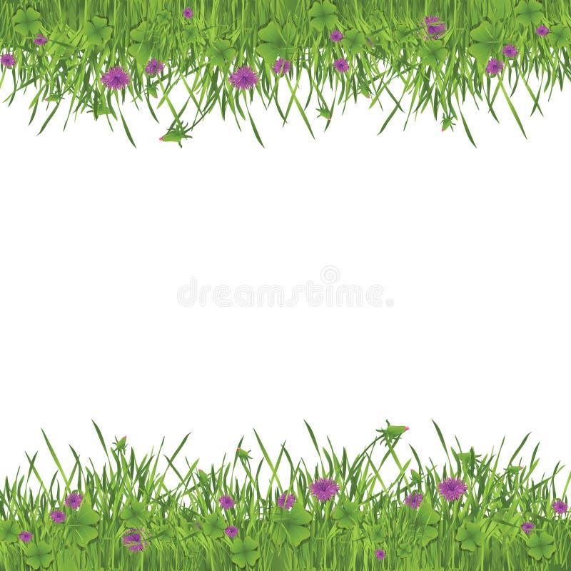 Grünes Gartenfeld lizenzfreie abbildung