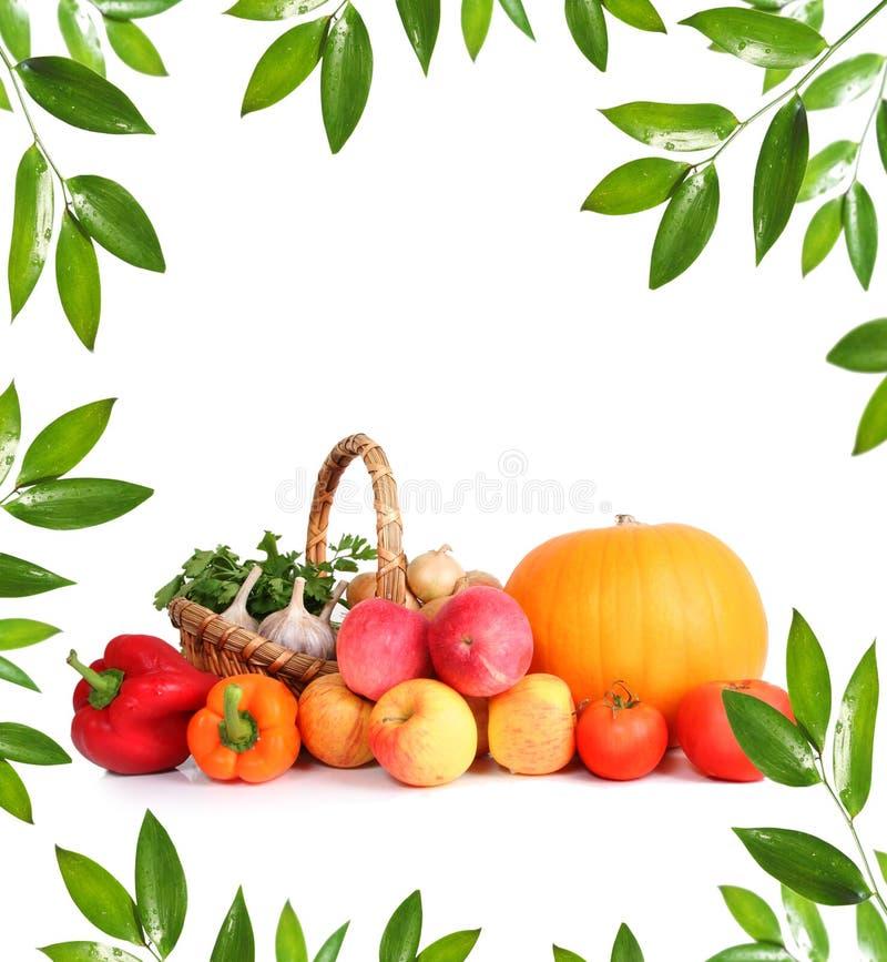 Grünes Gemüse stockfotos