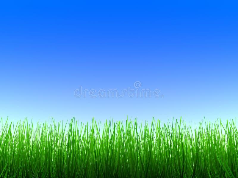 Grünes Gras stock abbildung