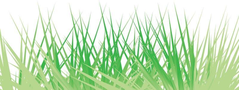 Grünes Gras lizenzfreie abbildung