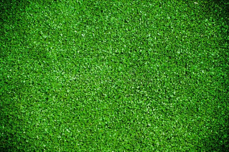 Grünes Gras des Papyruszusammenfassungshintergrundes lizenzfreies stockbild