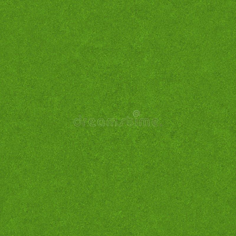 Grünes Gras-Feld-Beschaffenheit lizenzfreie stockfotografie