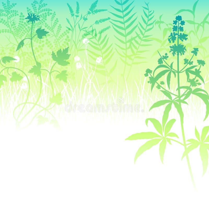 Grünes Gras-Hintergrund stock abbildung
