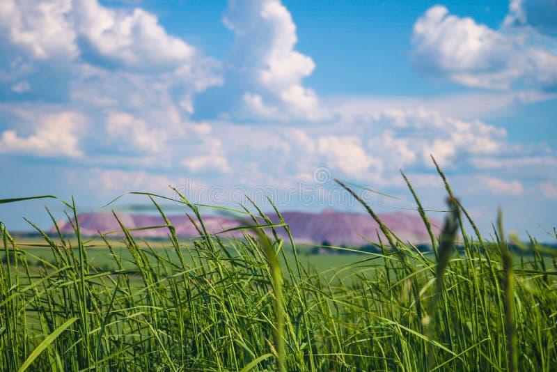 Grünes Gras im Vordergrund, aus Fokus terricone - ein künstlicher Hügel vom Haufwerk heraus, extrahiert vom Tiefbau von stockfotografie