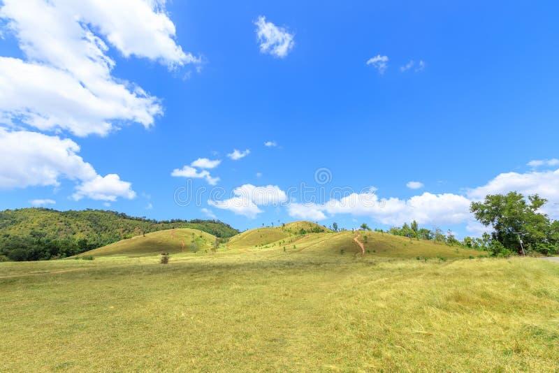 Grünes Gras am kahlen Hügelberg, szenischer Park in Ranong, Thailand stockbilder