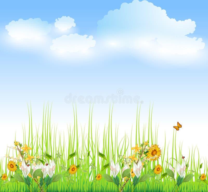 Grünes Gras mit Blumen vektor abbildung
