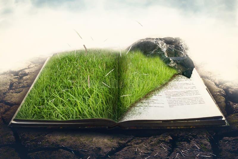 Grünes Gras mit Stein auf einem Buch stockbild