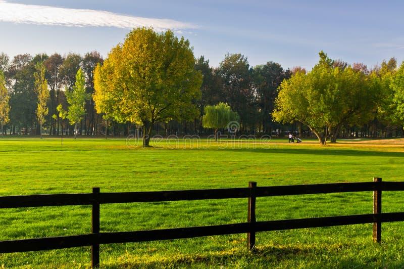 Grünes Gras und bunte Bäume umgeben durch einen Bretterzaun auf einem Golfplatz am sonnigen Morgen in Belgrad lizenzfreies stockbild