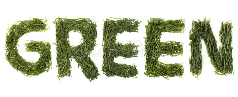 Grünes Gras-Wort lizenzfreie stockbilder