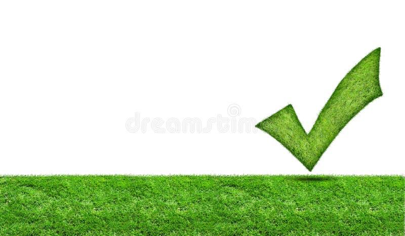 Grünes Häkchen auf einer grünen Wiese lizenzfreie stockfotografie