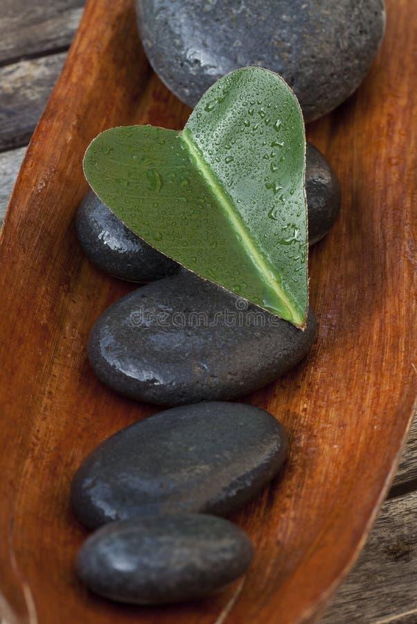 Grünes Herz-Blatt auf Kiesel stockbild