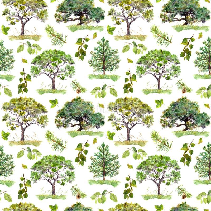 Grünes Holz Park, Waldmuster mit Bäumen Nahtloses Muster watercolor lizenzfreie stockbilder
