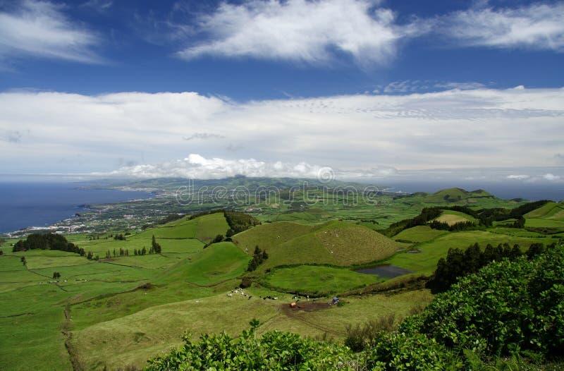 Grünes Insel-Panorama stockfotografie