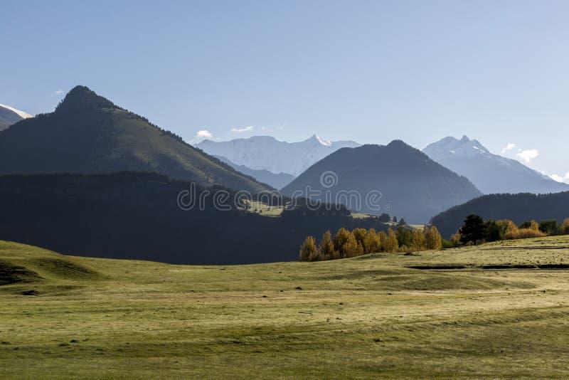 Grünes nebelhaftes Tal am frühen Morgen im Kaukasus, Georgia, Tusheti lizenzfreie stockfotografie