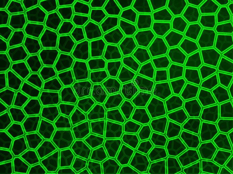 Grünes Neonweb lizenzfreie abbildung
