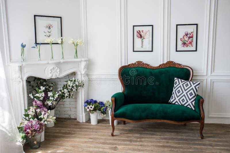 Grünes Sofa nahe weißer Wand mit Bildern stockfoto