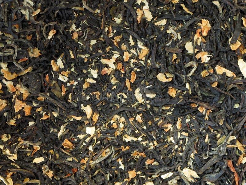 Grünes Teeblatt des Jasmins lizenzfreies stockfoto