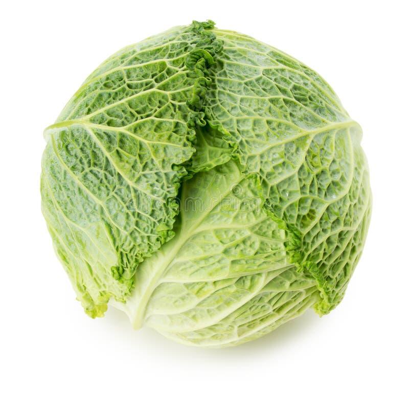 Grünkohl lokalisiert auf dem weißen Hintergrund stockfotografie