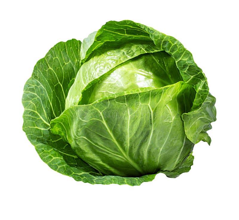 Grünkohl lokalisiert auf Weiß lizenzfreies stockfoto