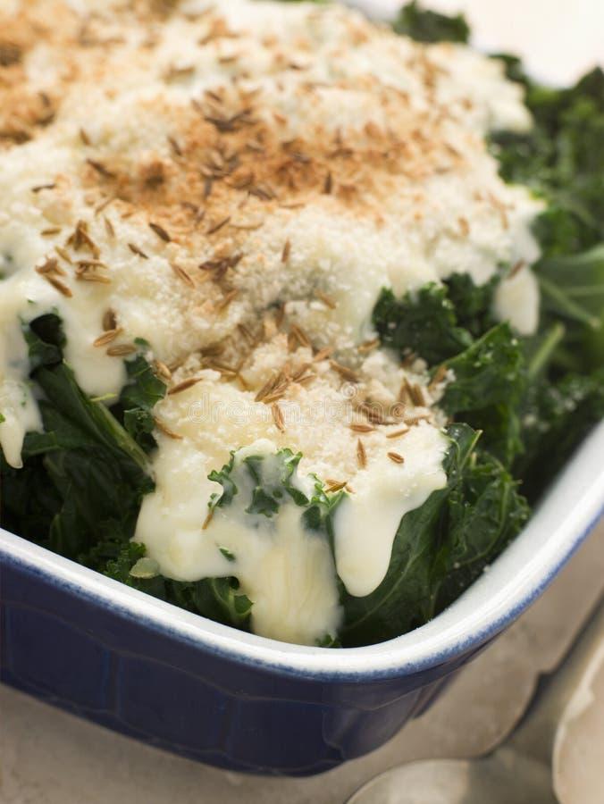 Grünkohl mit Käse-Soße-Kümmeln lizenzfreies stockfoto