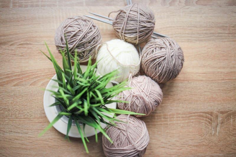 Grünpflanze im der Stricknadeln, Beige und weißen Garn des Topfes, sind auf dem Tisch lizenzfreies stockfoto