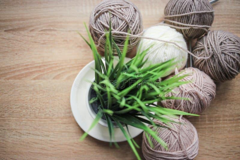 Grünpflanze im der Stricknadeln, Beige und weißen Garn des Topfes, sind auf dem Tisch stockbild