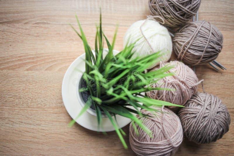 Grünpflanze im der Stricknadeln, Beige und weißen Garn des Topfes, sind auf dem Tisch stockfotografie