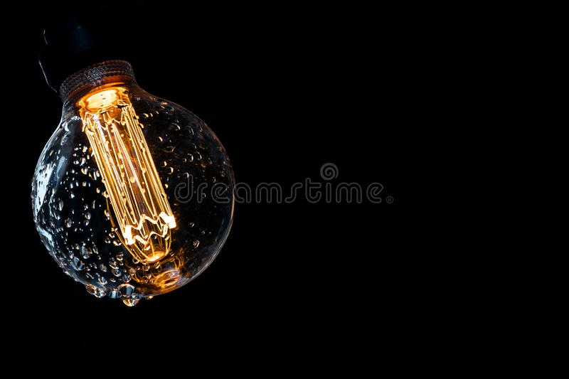 Grżę barwił i rozjarzona żarówka z wodą opuszcza na ciemnym tle fotografia royalty free