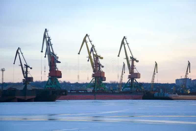 Gr?as portuarias en un puerto fluvial en un d?a de invierno Puerto del invierno fotografía de archivo libre de regalías