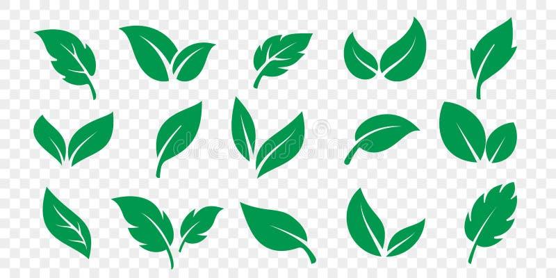 Gr?n bladsymbolsupps?ttning p? vit bakgrund Vektorvegetarian, strikt vegetarian, eco och organiska växt- symboler vektor illustrationer