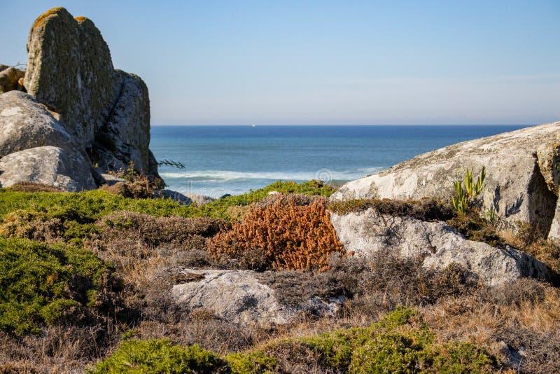 Gr?n och gul mossa och gr?s i stenar p? kusten f?r Atlantic Ocean kustsommar med vaggar och stenar Scenisk seascape arkivfoto