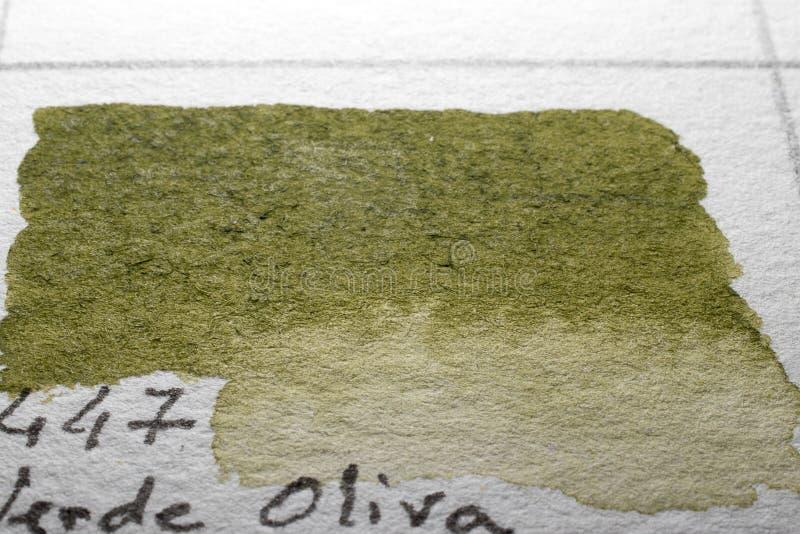 gr?n olivgr?n Vattenf?rgf?rgdiagram arkivbild