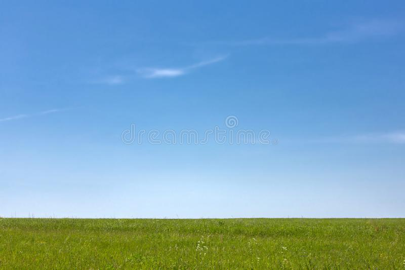 gr?n sky f?r bl?gr?s horisont bygd swallowtail f?r sommar f?r fj?rilsdaggr?s solig arkivbilder