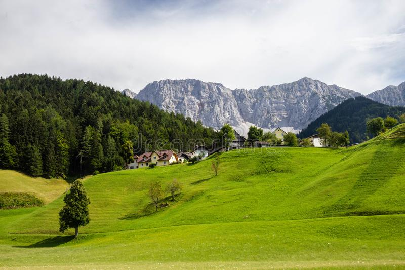 gr?ne Weide in ?sterreich-Alpen nahe Grenze mit Slowenien lizenzfreies stockbild