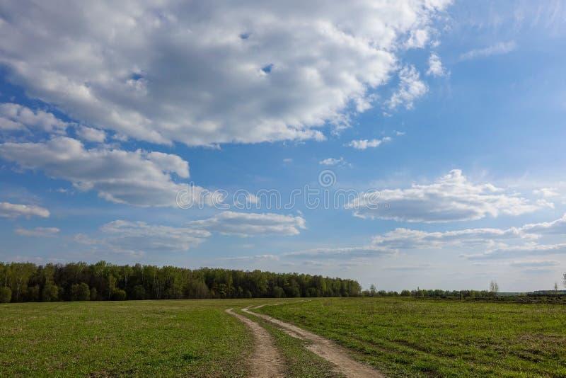 Gr?nes Feld mit Landstra?e und blauer Himmel mit Wolken Sch?ne l?ndliche Landschaft lizenzfreies stockfoto