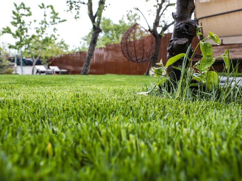 Gr?nes Gras im Yard Ein Haus und ein Garten Kurve, Perspektiveansicht Grasm?hen stockbild