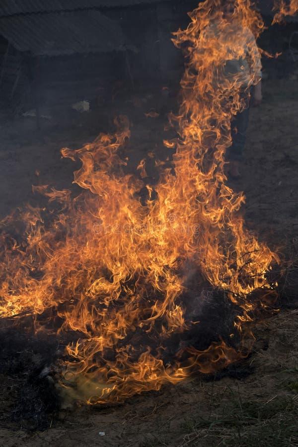 gr?s br?nner p? gatan branden ?r mycket stor vanlig inv?nare som f?rs?ker att sl?cka branden med en h?gaffel royaltyfria bilder