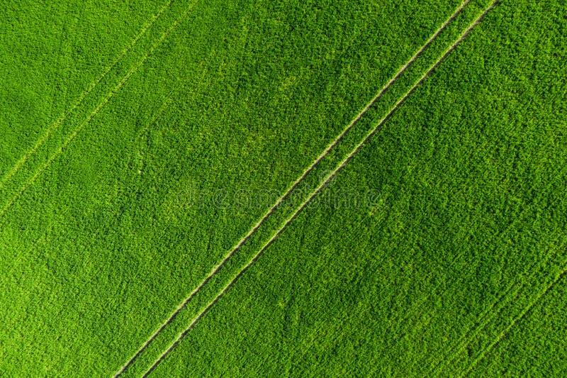 Gr?splan s?tter in bakgrund Jordbruks- äng från över Flyg- sikt för vårfält royaltyfria bilder