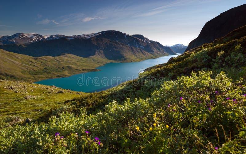 Grań Bessegen, Norwegia obrazy royalty free