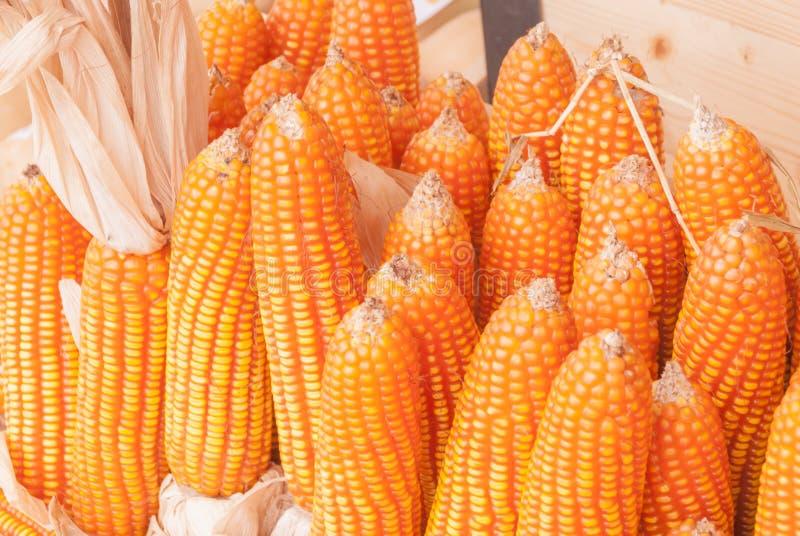 Graangrutten en zaden stock afbeelding