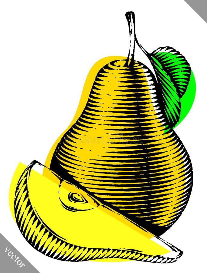 Grabado aislado grabe el ejemplo del vector de una pera stock de ilustración