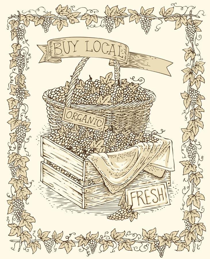 Grabado de la cesta de mimbre con la uva madura ilustración del vector