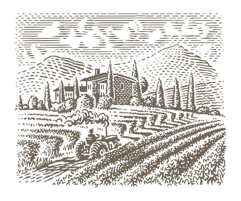 Grabado del ejemplo del estilo de una granja europea del viñedo Vector ilustración del vector