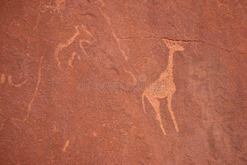 Grabados de la roca de los bosquimanos. Twyfelfontein fotografía de archivo