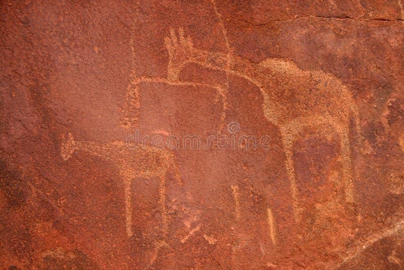Grabados de la roca de los bosquimanos. Twyfelfontein fotografía de archivo libre de regalías